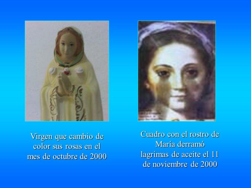 Virgen que cambio de color sus rosas en el mes de octubre de 2000 Cuadro con el rostro de María derramó lagrimas de aceite el 11 de noviembre de 2000