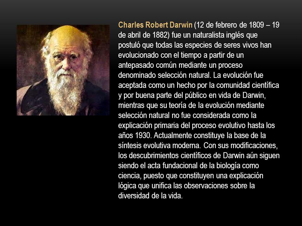 Galileo Galilei (Pisa, 15 de febrero de 1564 - Florencia, 8 de enero de 1642), fue un astrónomo, filósofo, matemático y físico italiano que estuvo rel