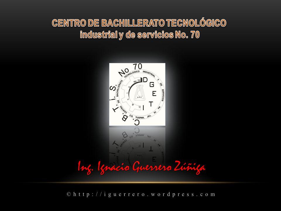 Ing. Ignacio Guerrero Zúñiga