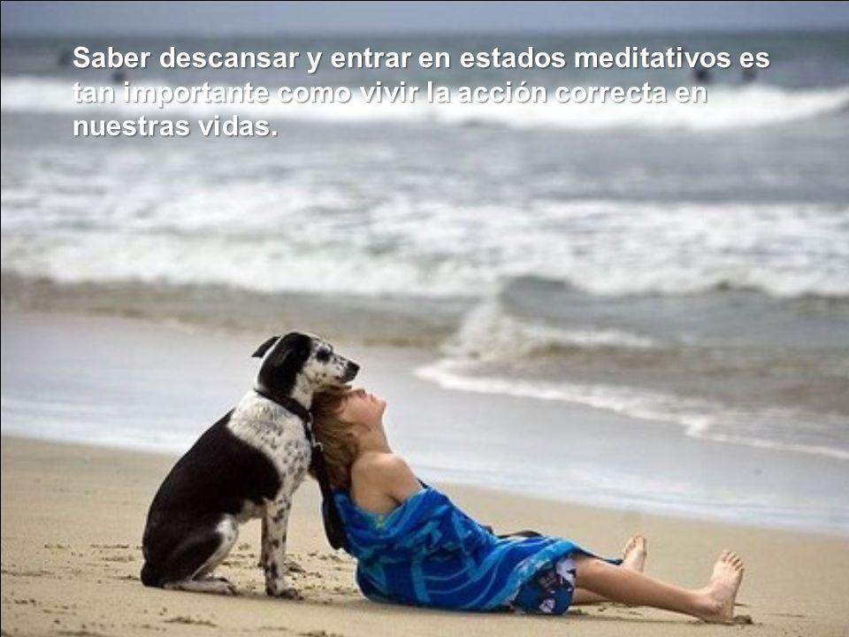 Saber descansar y entrar en estados meditativos es tan importante como vivir la acción correcta en nuestras vidas.