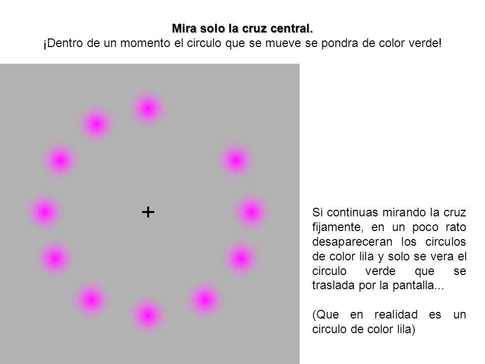 Mira solo la cruz central. Mira solo la cruz central. ¡Dentro de un momento el circulo que se mueve se pondra de color verde! Si continuas mirando la
