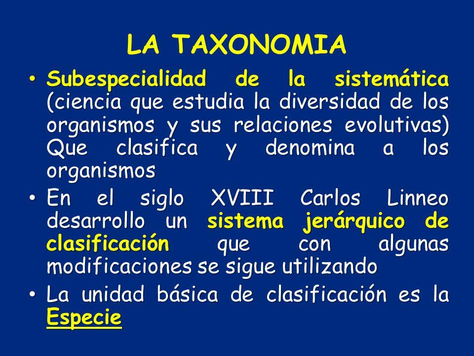 LA TAXONOMIA Subespecialidad de la sistemática (ciencia que estudia la diversidad de los organismos y sus relaciones evolutivas) Que clasifica y denom