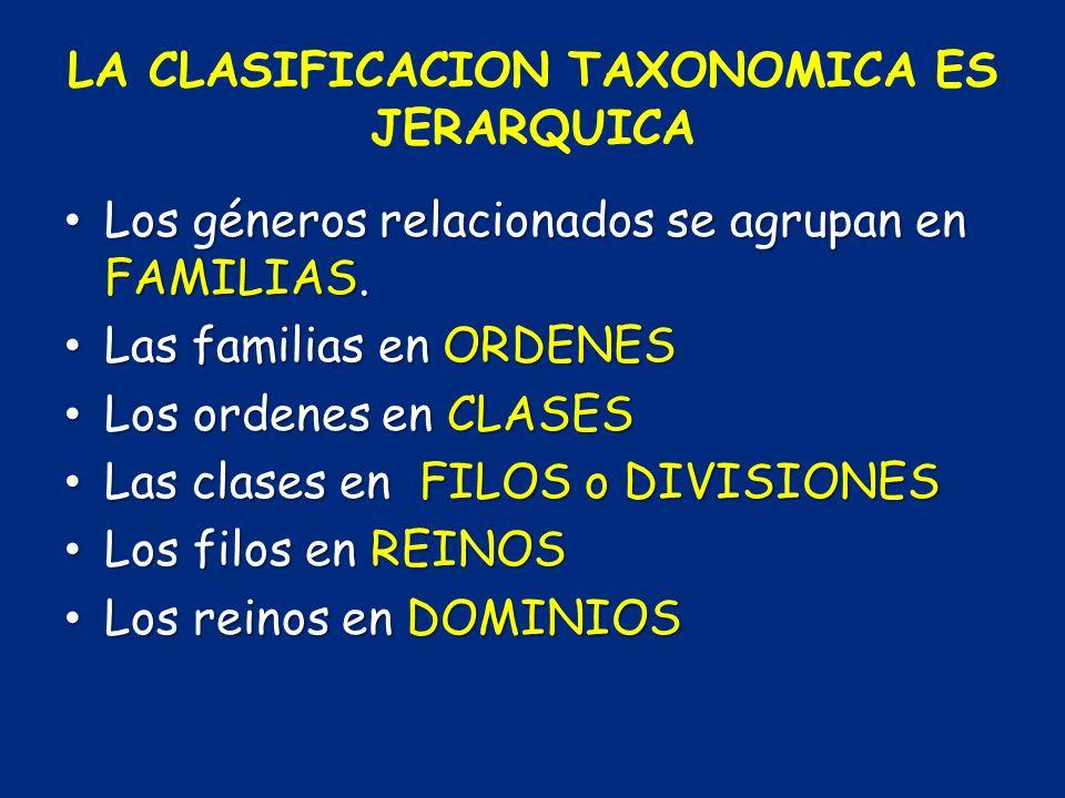 LA CLASIFICACION TAXONOMICA ES JERARQUICA Los géneros relacionados se agrupan en FAMILIAS. Los géneros relacionados se agrupan en FAMILIAS. Las famili