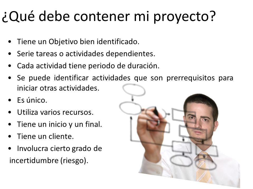 ¿Qué es Microsoft Project.