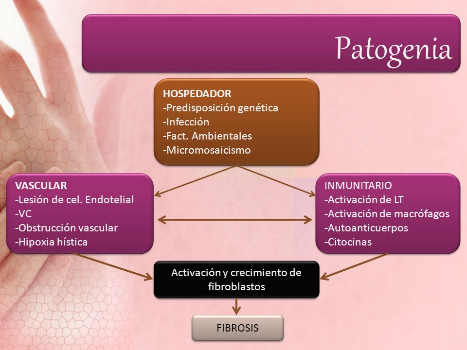 HOSPEDADOR -Predisposición genética -Infección -Fact. Ambientales -Micromosaicismo HOSPEDADOR -Predisposición genética -Infección -Fact. Ambientales -