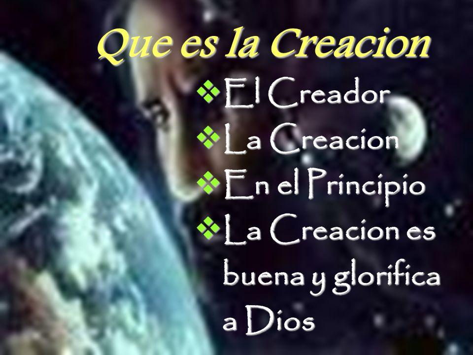 Que es la Creacion El Creador El Creador La Creacion La Creacion En el Principio En el Principio La Creacion es La Creacion es buena y glorifica buena