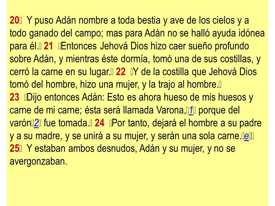 20 Y puso Adán nombre a toda bestia y ave de los cielos y a todo ganado del campo; mas para Adán no se halló ayuda idónea para él. 21 Entonces Jehová