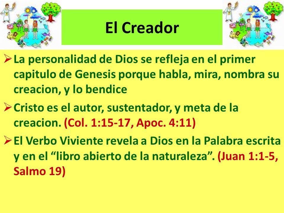 La creacion revela acerca de Dios: Su sabiduria y poder (Job 28:23-27) Su gloria (Salmo 19:1) Su poder y deidad (Romanos 1:18-21) Su amor por el hombre (Salmo 8:3-9) Su cuidado providencial (Isaias 40:12) La gracia del Padre (Mateo 6:25)