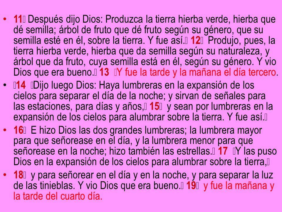 11 Después dijo Dios: Produzca la tierra hierba verde, hierba que dé semilla; árbol de fruto que dé fruto según su género, que su semilla esté en él,