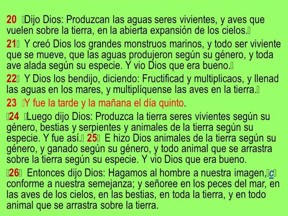 20 Dijo Dios: Produzcan las aguas seres vivientes, y aves que vuelen sobre la tierra, en la abierta expansión de los cielos. 21 Y creó Dios los grande