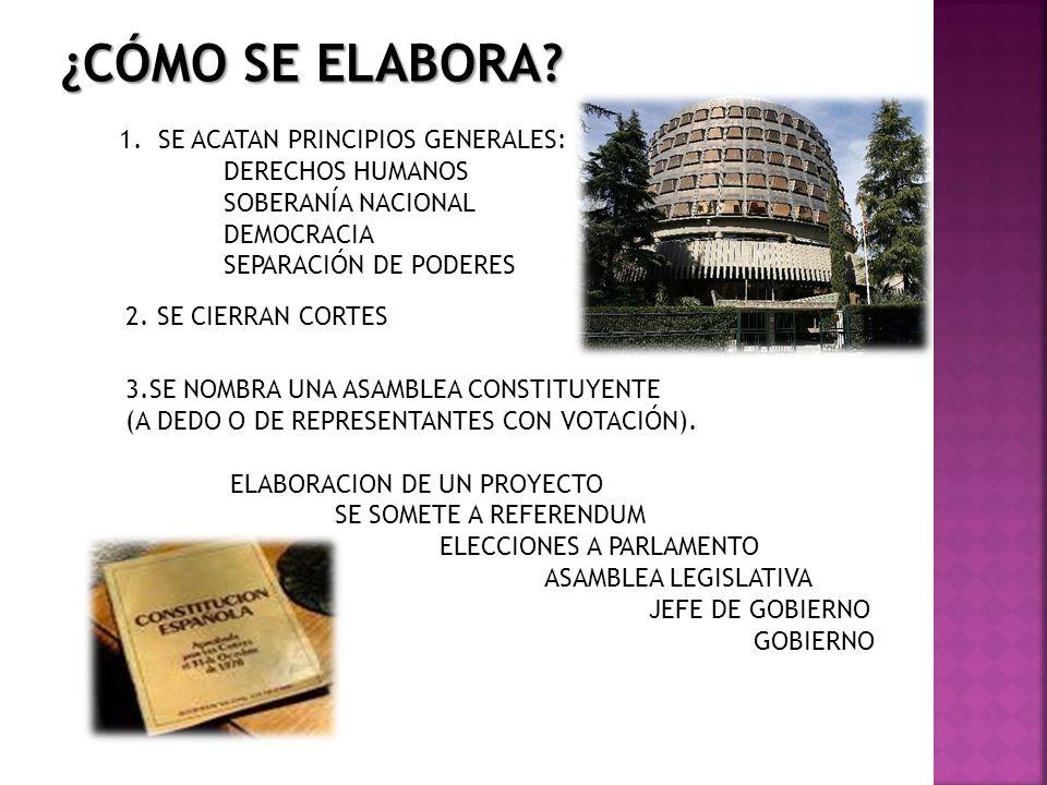 PARTES PREÁMBULO REPRESENTATIVIDAD Y LEGITIMIDAD DE DÓNDE EMANA EL PODER (SOBERANÍA) IDEOLOGÍA Y FIN DEL ESTADO PUEDE ESTAR EN EL ARTICULADO PARTE DOGMÁTICA DECLARACIÓN DE DERECHOS Y DEBERES DE LOS CIUDADANOS.