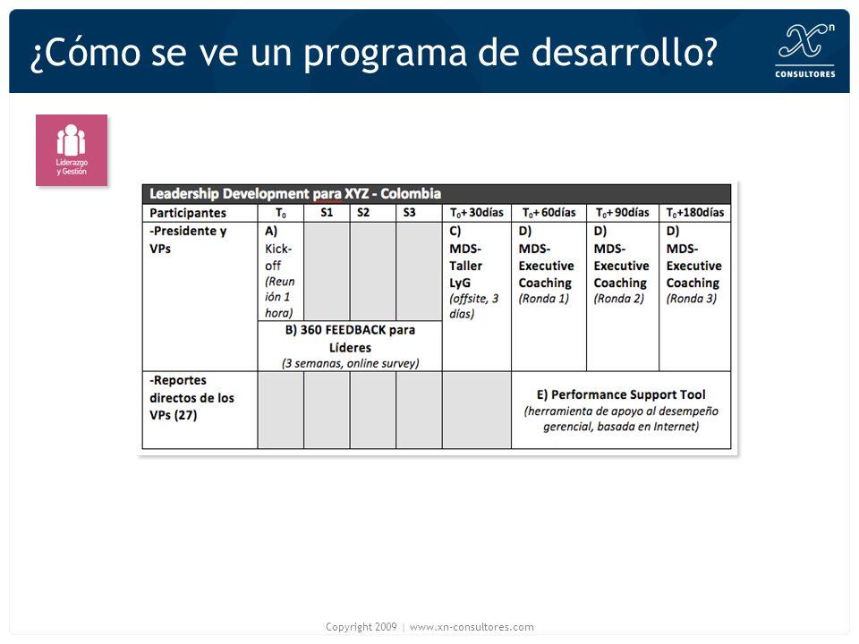 ¿Cómo se ve un programa de desarrollo? Copyright 2009 | www.xn-consultores.com