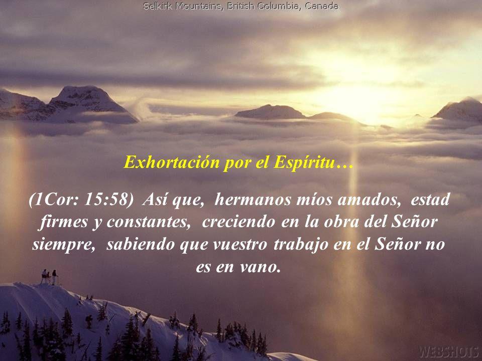 V: 20 Pero vosotros, amados, edificándoos sobre vuestra santísima fe, orando en el Espíritu Santo, V: 22 A algunos que dudan, convencedlos. V: 23 A ot
