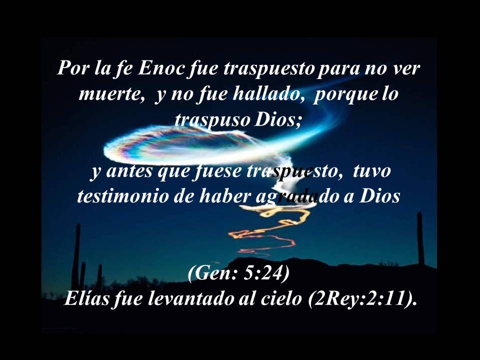 Porque por ella alcanzaron buen testimonio los antiguos. Veamos estos ejemplos: Por la fe Abel ofreció a Dios más excelente sacrificio que Caín, por l