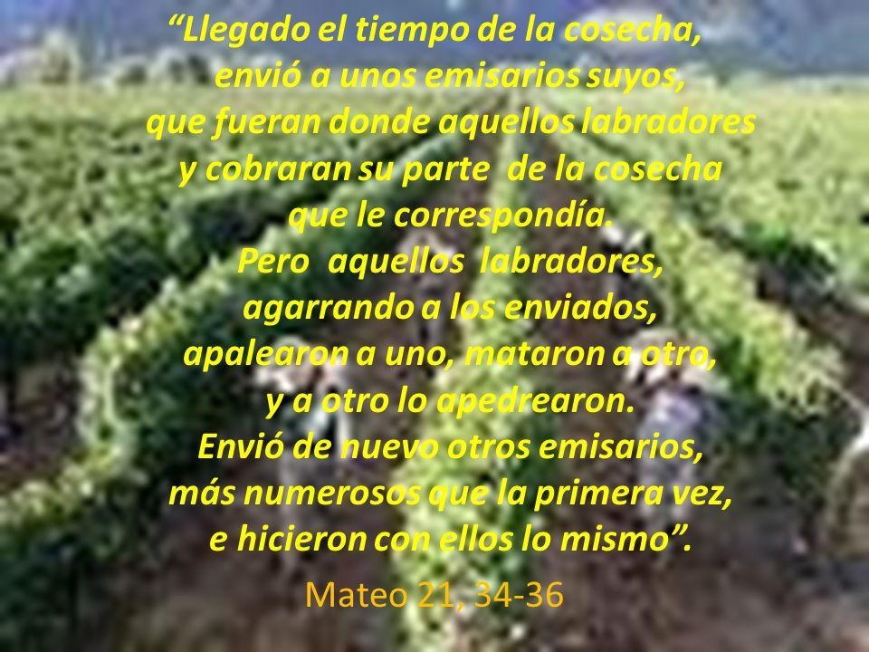 Llegado el tiempo de la cosecha, envió a unos emisarios suyos, que fueran donde aquellos labradores y cobraran su parte de la cosecha que le correspon