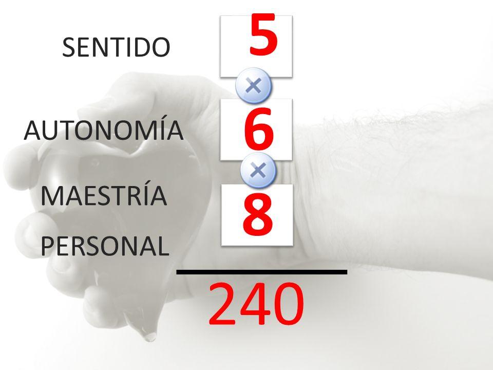 SENTIDO AUTONOMÍA MAESTRÍA PERSONAL 5 8 6 240