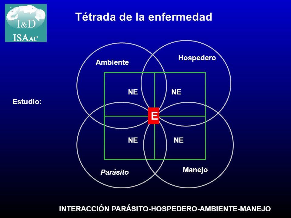 Parásito Ambiente INTERACCIÓN PARÁSITO-HOSPEDERO-AMBIENTE-MANEJO Tétrada de la enfermedad Hospedero Manejo E NE Estudio: