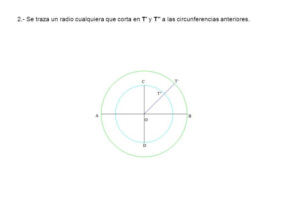 2.- Se traza un radio cualquiera que corta en T' y T'' a las circunferencias anteriores.