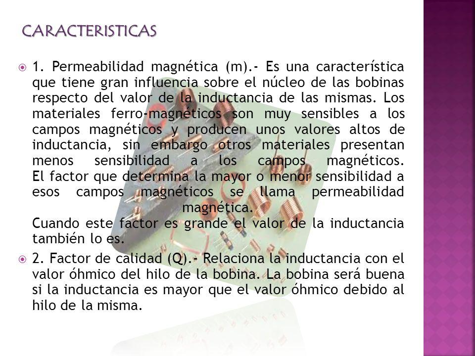 CARACTERISTICAS 1.