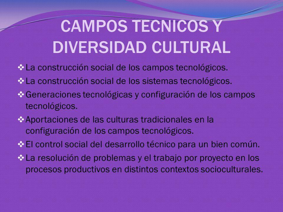 CAMPOS TECNICOS Y DIVERSIDAD CULTURAL La construcción social de los campos tecnológicos.