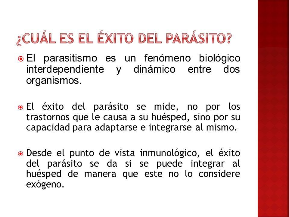 El parasitismo es un fenómeno biológico interdependiente y dinámico entre dos organismos. El éxito del parásito se mide, no por los trastornos que le