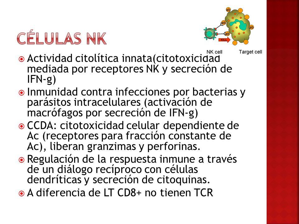 Actividad citolítica innata(citotoxicidad mediada por receptores NK y secreción de IFN-g) Inmunidad contra infecciones por bacterias y parásitos intra