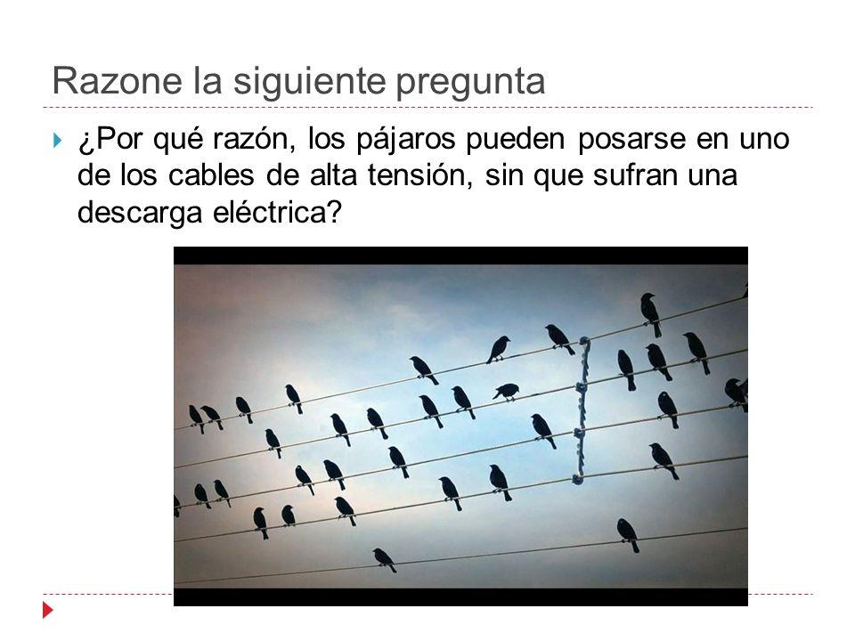 Razone la siguiente pregunta ¿Por qué razón, los pájaros pueden posarse en uno de los cables de alta tensión, sin que sufran una descarga eléctrica?