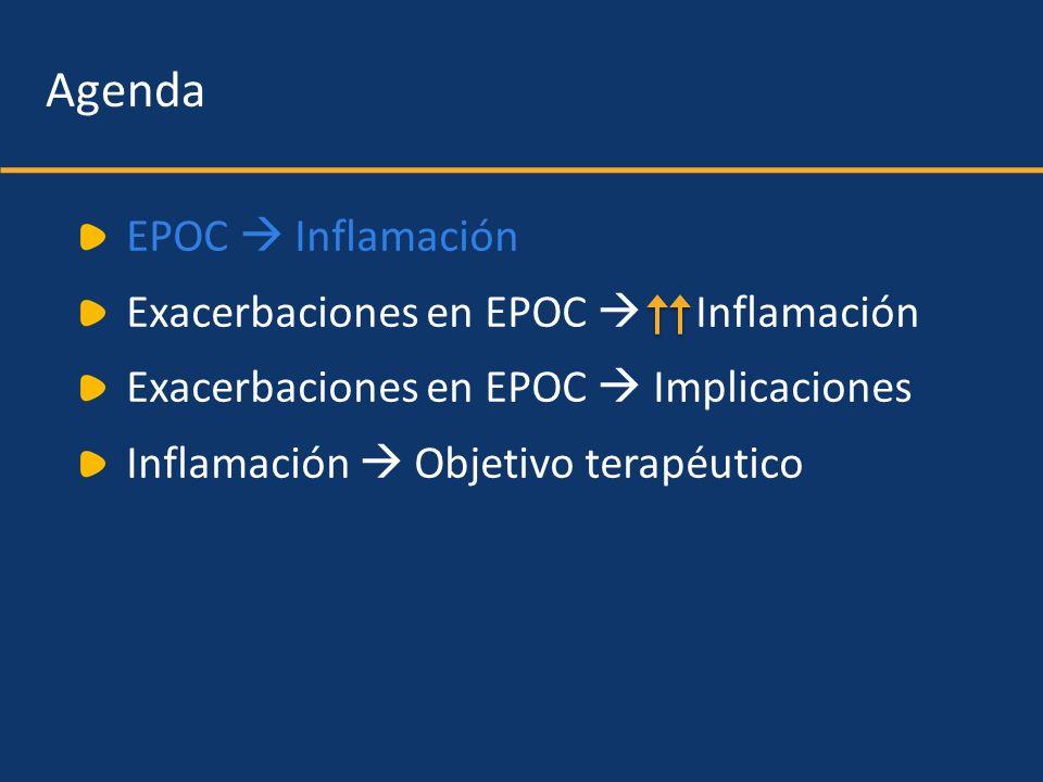 Agenda EPOC Inflamación Exacerbaciones en EPOC Inflamación Exacerbaciones en EPOC Implicaciones Inflamación Objetivo terapéutico