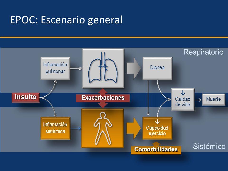 Respiratorio Sistémico InsultoInsulto Inflamación pulmonar Inflamación pulmonar ExacerbacionesExacerbaciones InflamaciónsistémicaInflamaciónsistémica