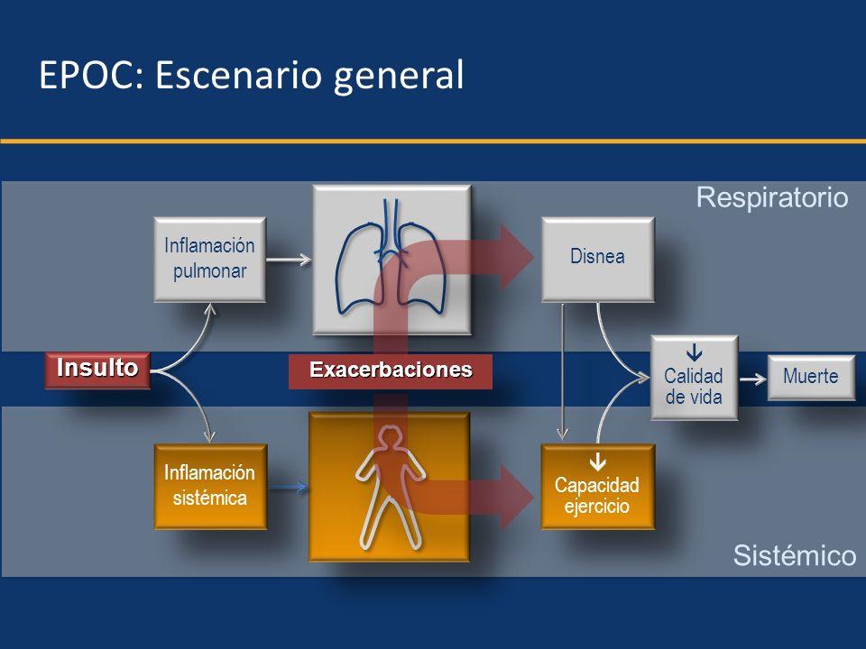 Respiratorio Sistémico InsultoInsulto Inflamación pulmonar Inflamación pulmonar Inflamación sistémica Inflamación sistémica EPOC: Escenario general Di