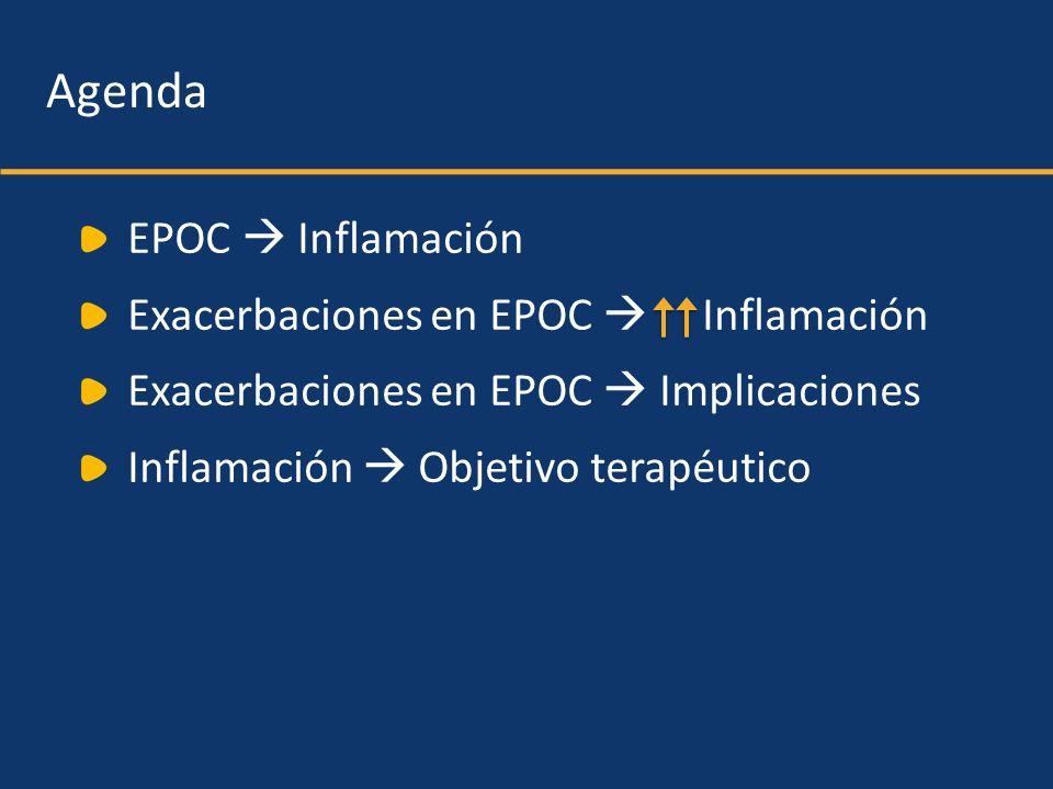Patients (n=16) with infrequent exacerbations (<2.9/yr) FEV 1 decline: 32.1 mL/yr; 3.6%/yr Patients (n=16) with infrequent exacerbations (<2.9/yr) FEV 1 decline: 32.1 mL/yr; 3.6%/yr 0.75 0.80 0.85 0.90 0.95 0 0 1 1 2 2 3 3 4 4 Years FEV 1 (L) Donaldson GC et al.