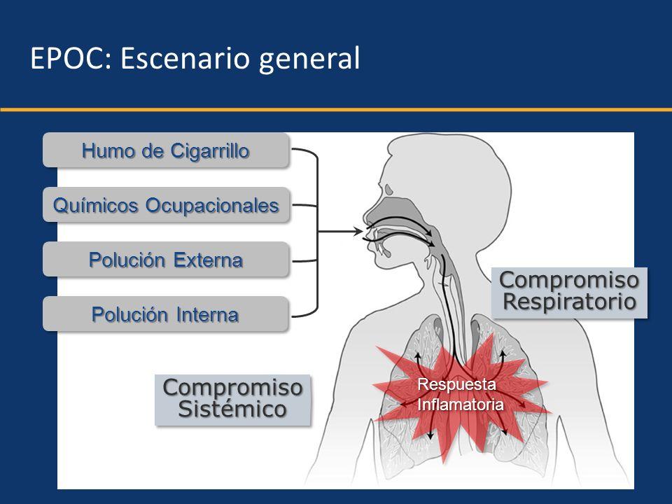 Humo de Cigarrillo Químicos Ocupacionales Polución Externa Polución Interna CompromisoRespiratorioCompromisoRespiratorio CompromisoSistémicoCompromiso
