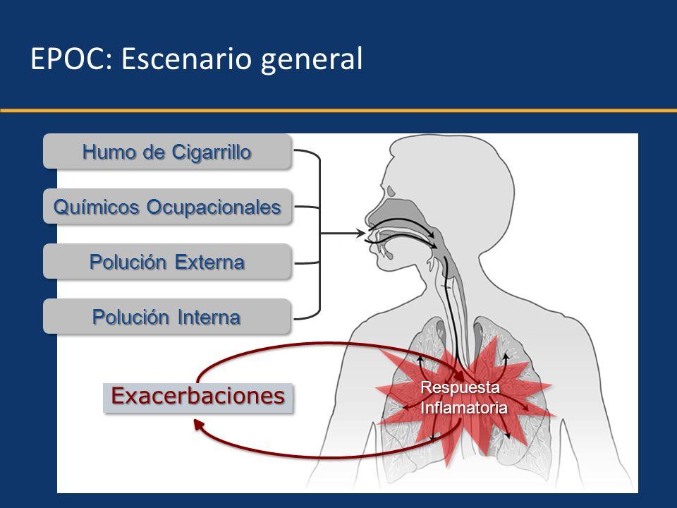 Humo de Cigarrillo Químicos Ocupacionales Polución Externa Polución Interna RespuestaInflamatoriaRespuestaInflamatoria EPOC: Escenario general Exacerb