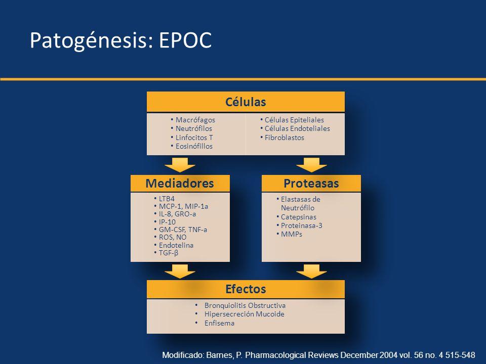 Mediadores Inflamatorios Agentes Oxidantes Mediadores Inflamatorios Agentes Oxidantes EnfisemaEnfisemaHipersecreciónMucoideHipersecreciónMucoideBronquiolitisObstructivaBronquiolitisObstructiva Patogénesis: EPOC InsultoInsulto