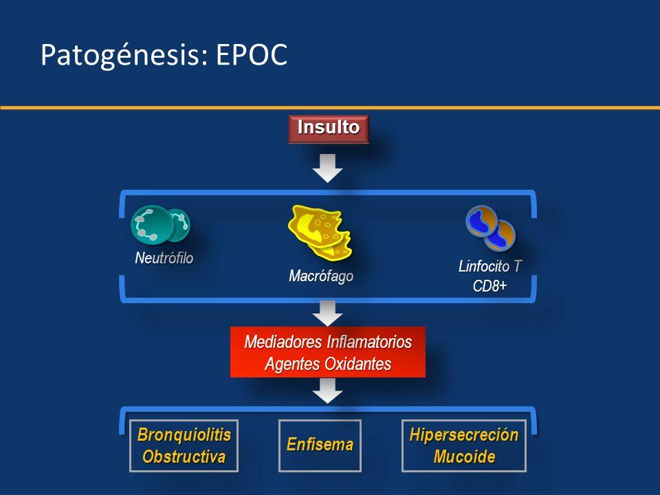 Probability of surviving ER=emergency room.Soler-Cataluña JJ, et al.
