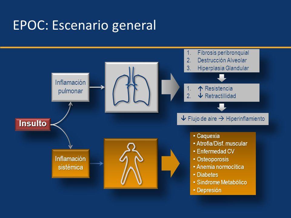 Respiratorio Sistémico InsultoInsulto Inflamación pulmonar Inflamación pulmonar InflamaciónsistémicaInflamaciónsistémica Disnea Calidad de vida Capacidad ejercicio Capacidad ejercicio Muerte EPOC: Escenario general