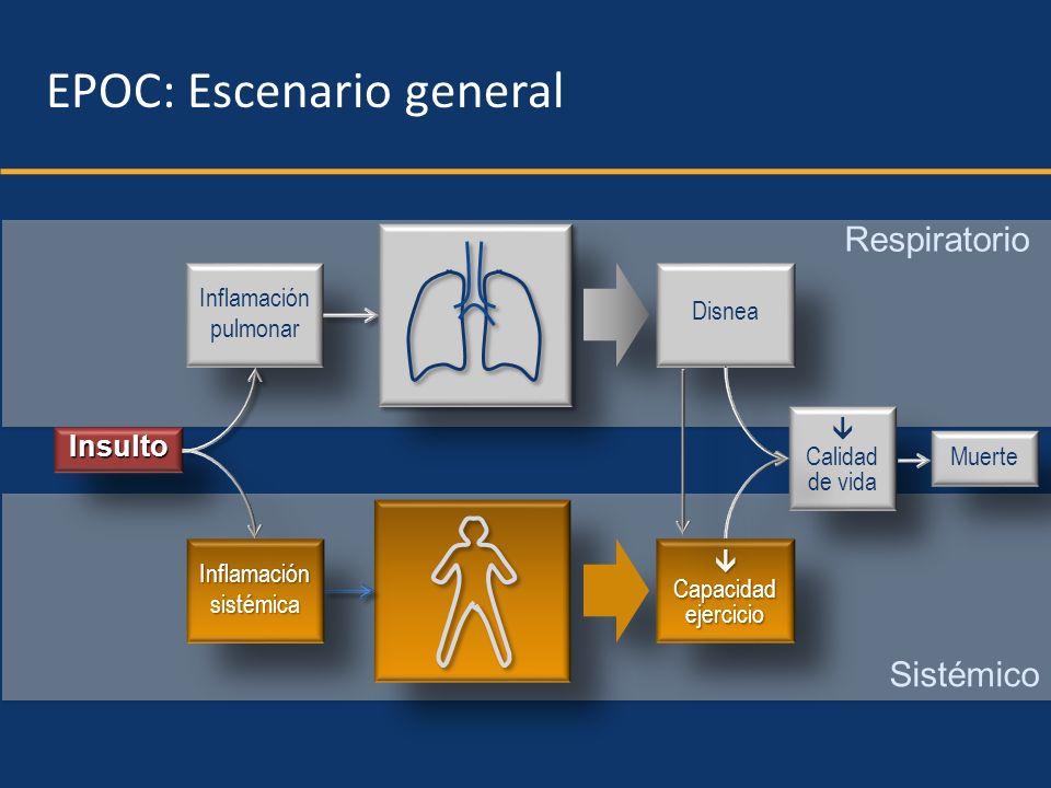 Respiratorio Sistémico InsultoInsulto Inflamación pulmonar Inflamación pulmonar InflamaciónsistémicaInflamaciónsistémica Disnea Calidad de vida Capaci