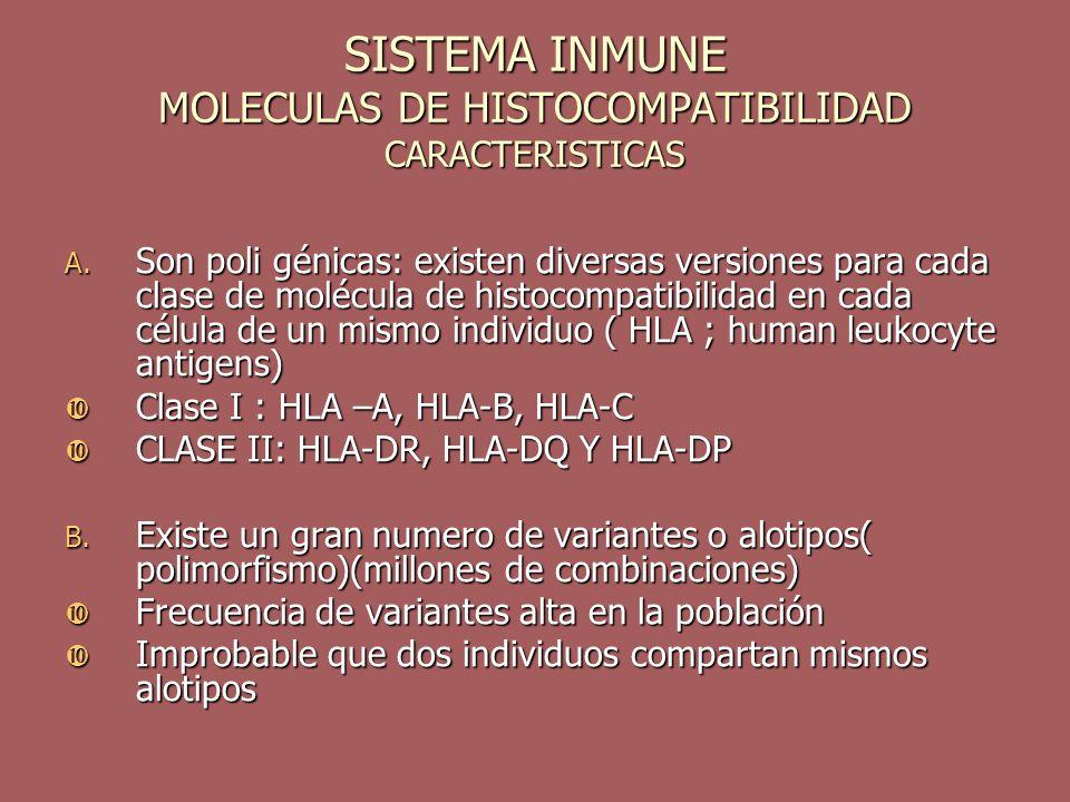 SISTEMA INMUNE MOLECULAS DE HISTOCOMPATIBILIDAD CARACTERISTICAS A. Son poli génicas: existen diversas versiones para cada clase de molécula de histoco