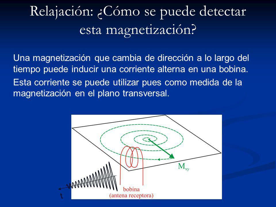 Una magnetización que cambia de dirección a lo largo del tiempo puede inducir una corriente alterna en una bobina.
