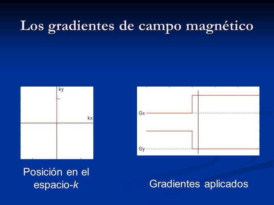 Los gradientes de campo magnético Posición en el espacio-k Gradientes aplicados