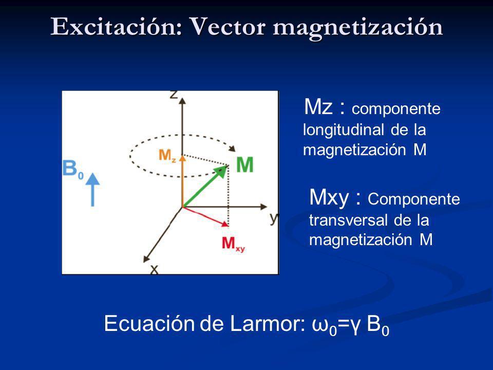 Excitación: Simulación por ordenador Trayectoria simulada por ordenador de la magnetización durante la aplicación de un pulso de excitación de RF 45º, 90º y 170º en un campo magnético de 1 T.