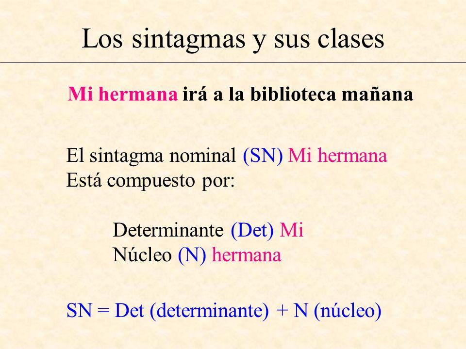 Los sintagmas y sus clases Mi hermana irá a la biblioteca mañana El sintagma nominal (SN) Mi hermana Está compuesto por: Determinante (Det) Mi Núcleo