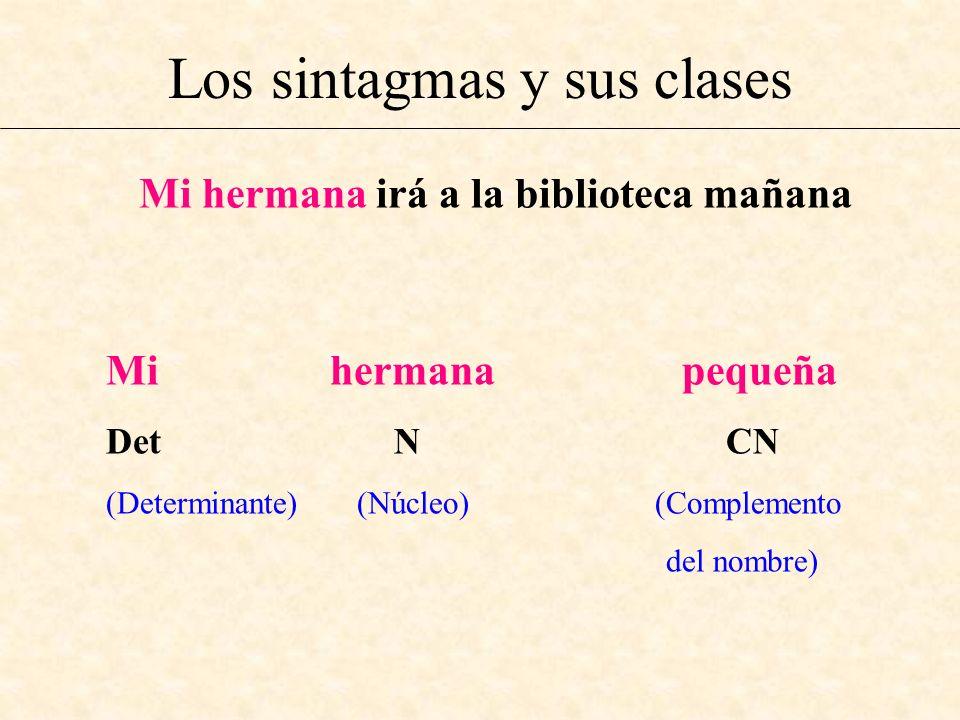 Los sintagmas y sus clases Mi hermana irá a la biblioteca mañana Mi hermana pequeña Det N CN (Determinante) (Núcleo) (Complemento del nombre)