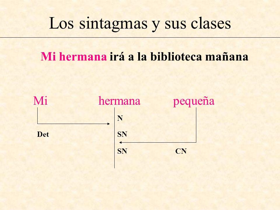 Los sintagmas y sus clases Mi hermana irá a la biblioteca mañana Mi hermana pequeña N Det SN SN CN