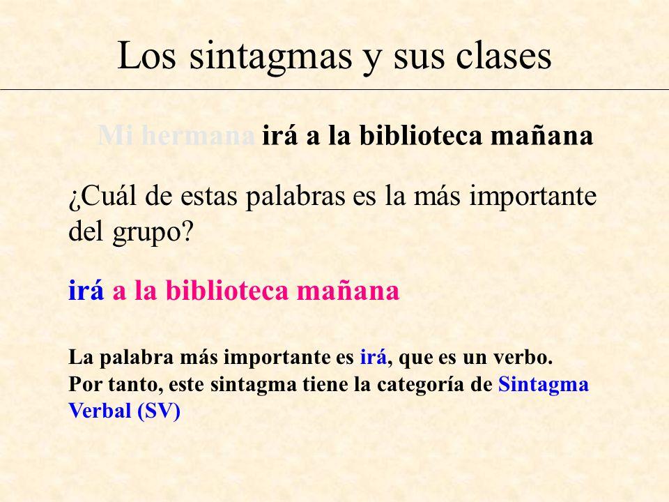 Los sintagmas y sus clases ¿Cuál de estas palabras es la más importante del grupo? Mi hermana irá a la biblioteca mañana irá a la biblioteca mañana La