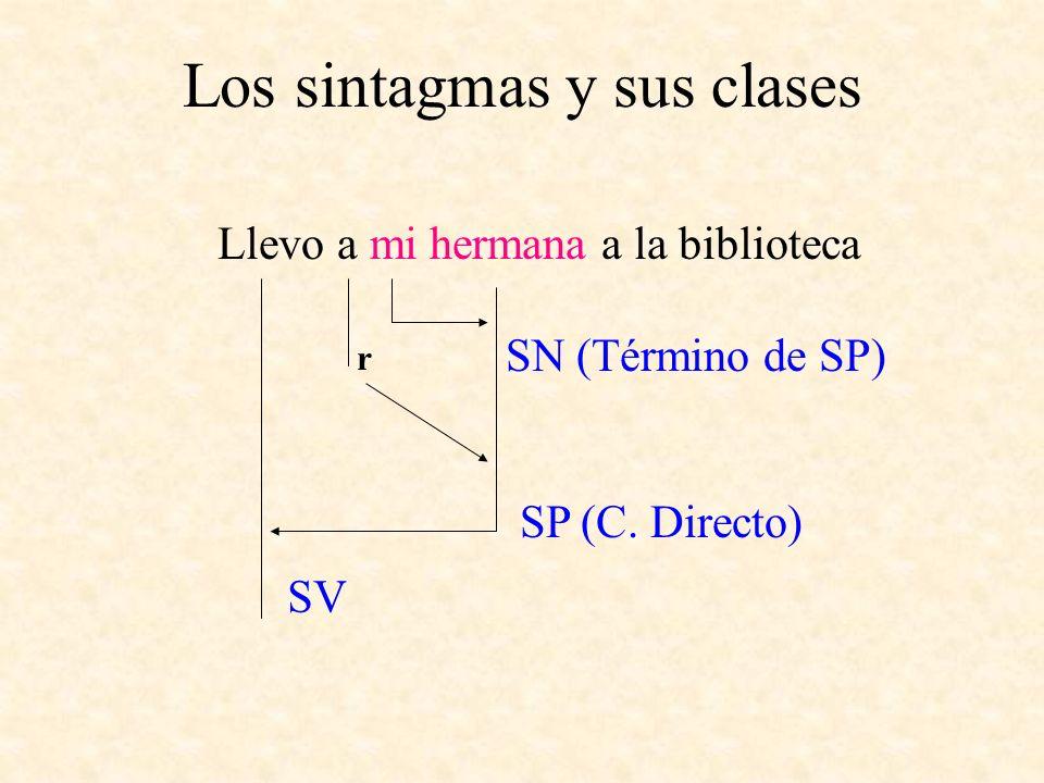 Los sintagmas y sus clases Llevo a mi hermana a la biblioteca SN (Término de SP) SP (C. Directo) r SV