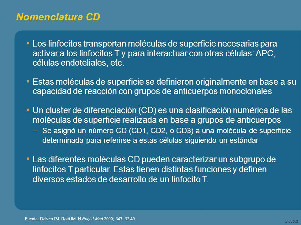 E - 00602 Nomenclatura CD Los linfocitos transportan moléculas de superficie necesarias para activar a los linfocitos T y para interactuar con otras c