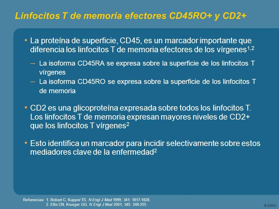 E - 00602 Linfocitos T de memoria efectores CD45RO+ y CD2+ La proteína de superficie, CD45, es un marcador importante que diferencia los linfocitos T