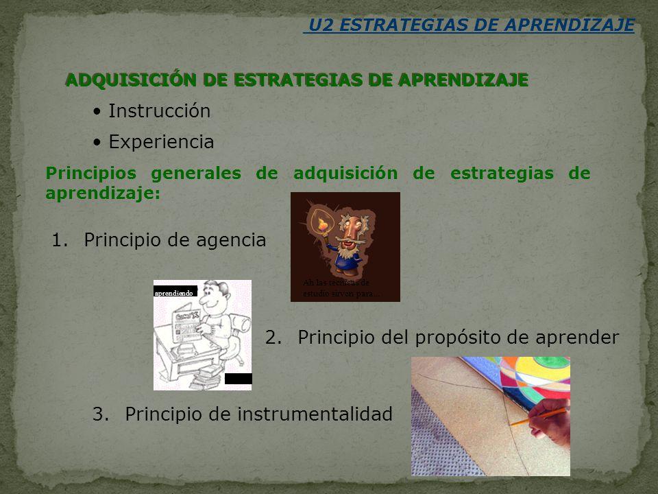 ADQUISICIÓN DE ESTRATEGIAS DE APRENDIZAJE Instrucción Experiencia Principios generales de adquisición de estrategias de aprendizaje: 1.Principio de ag