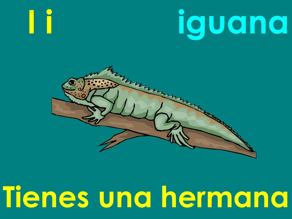 I i Tienes una hermana iguana